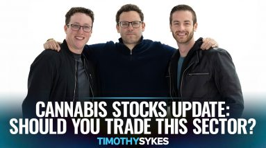 Cannabis Stocks Update: Should You Trade This Sector?